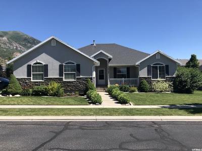 Cedar Hills Single Family Home For Sale: 10768 N Fiddlesticks