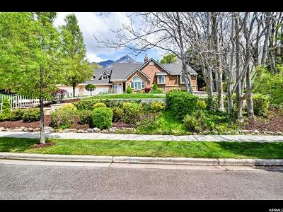Alpine Single Family Home For Sale: 45 S Lone Peak Dr E