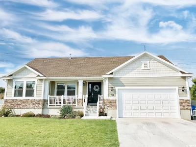 Lehi Single Family Home For Sale: 766 W 1250 S
