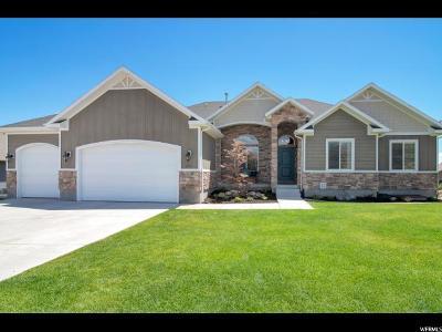 Saratoga Springs Single Family Home For Sale: 2522 S Colt Dr E