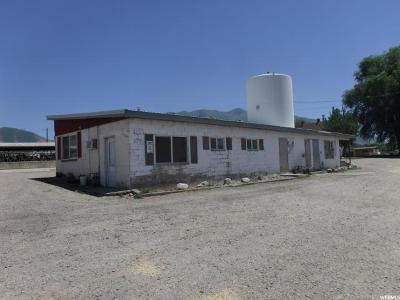 Springville Farm For Sale: 1295 S Main St