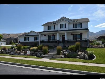 Smithfield Single Family Home For Sale: 356 S 1025 E