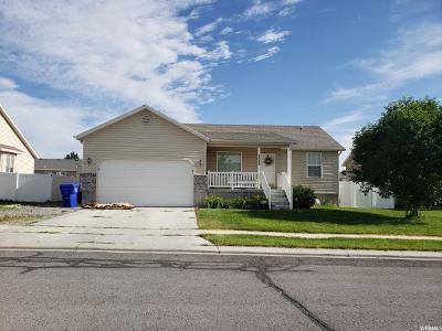 Eagle Mountain Single Family Home For Sale: 2088 E Lodge Pole