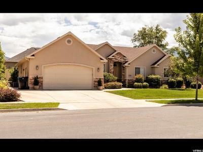 Spanish Fork Single Family Home For Sale: 646 N 1400 E