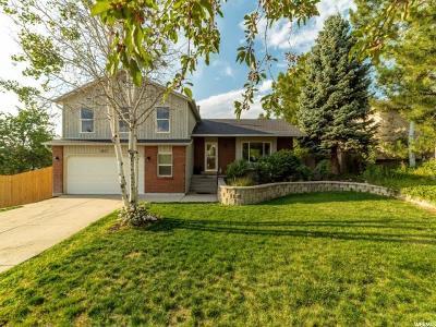 Sandy Single Family Home For Sale: 2057 E 10140 S