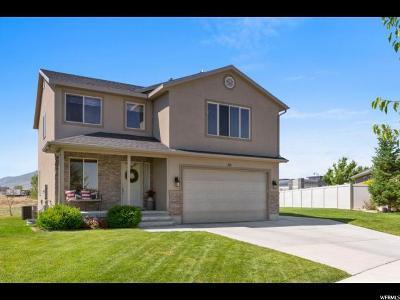 Saratoga Springs Single Family Home For Sale: 39 E Argyle Way