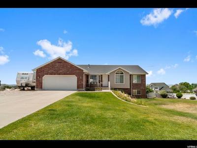 Willard Single Family Home For Sale: 7568 S 520 W