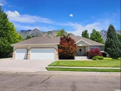Alpine Single Family Home For Sale: 911 S Andes Dr W