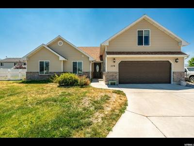 Nibley Single Family Home For Sale: 1170 W 2550 S