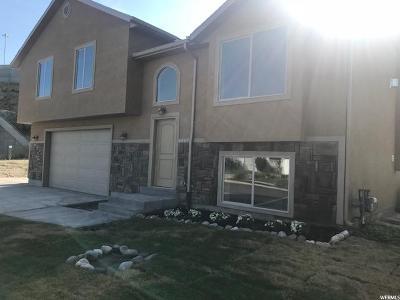 Murray Single Family Home For Sale: 6567 S Daniel Way