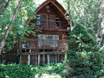 Springville Single Family Home For Sale: 6074 E Grindstone Drive