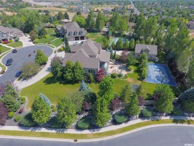 Alpine Single Family Home For Sale: 634 S Pheasant Ridge Ct