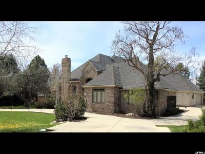 Provo Single Family Home For Sale: 4125 N Canyon Rd E