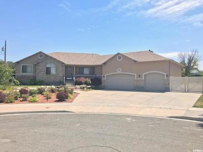 West Valley City Single Family Home For Sale: 4509 S Maple Meadows Dr W