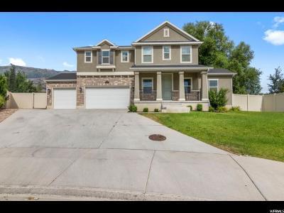 Pleasant Grove Single Family Home For Sale: 389 S 375 E