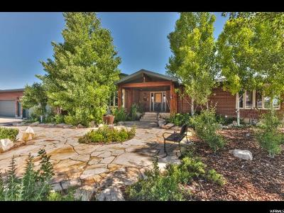 Park City Single Family Home For Sale: 7476 Whileaway Road W