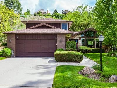 Sandy Single Family Home For Sale: 8769 S Snow Mountain Cir E