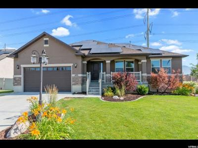 Lehi Single Family Home For Sale: 692 W 1250 S