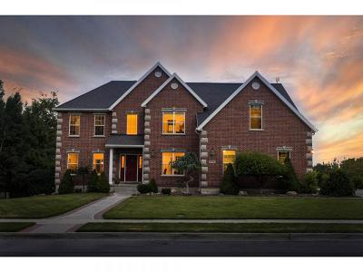 Alpine Single Family Home For Sale: 311 W International Way N