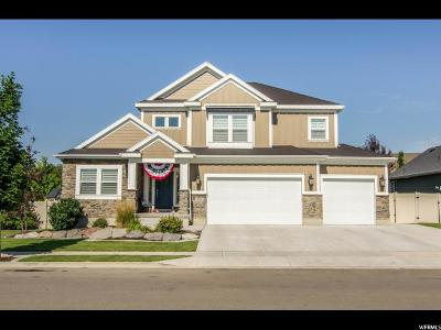 Lehi Single Family Home For Sale: 3211 N 460 E