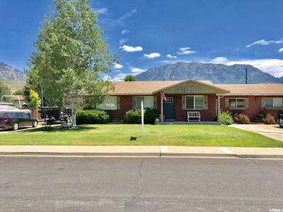 Orem Single Family Home For Sale: 1146 N 200 E