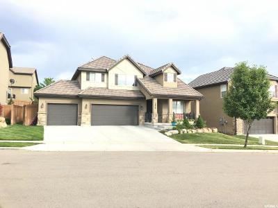 Lehi Single Family Home For Sale: 4676 N Shady View Ln W