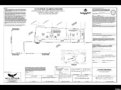South Jordan Residential Lots & Land For Sale: 9990 S 1000 W