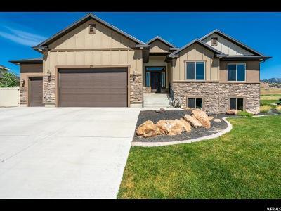 Smithfield Single Family Home For Sale: 378 S 1100 E
