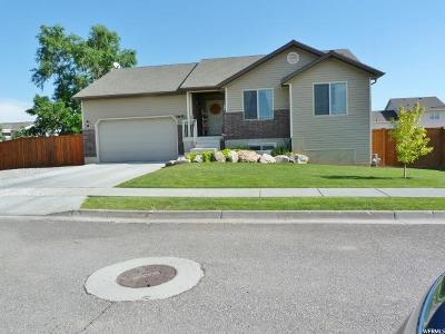 Tremonton Single Family Home For Sale: 783 W 900 S
