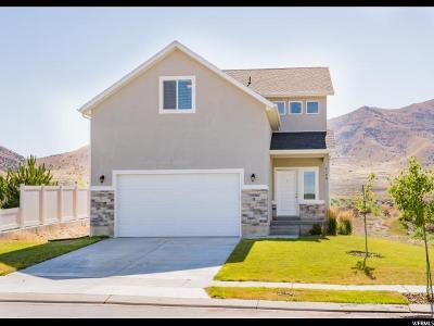 Eagle Mountain Single Family Home For Sale: 4106 N Lake Mountain Rd W