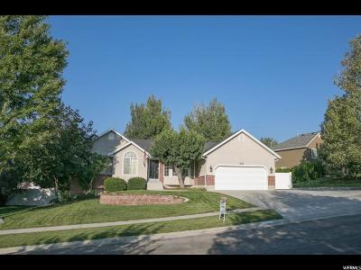 Draper Single Family Home For Sale: 12137 S Samson Cir W