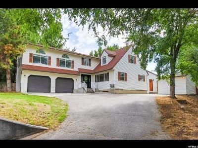 Midvale Single Family Home For Sale: 7404 S Union Park Ave