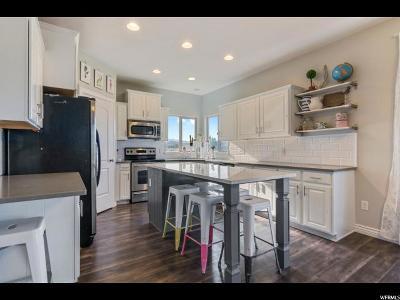 Eagle Mountain Single Family Home For Sale: 3359 N Kennekuk Ln