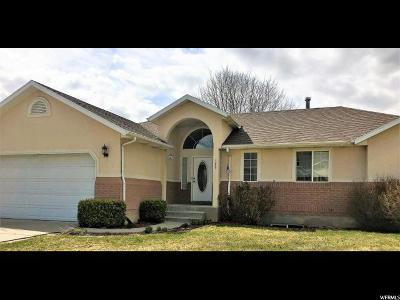 Springville Single Family Home For Sale: 325 N 525 E