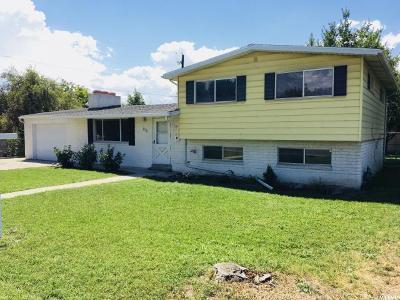Midvale Single Family Home For Sale: 8018 S Monroe St