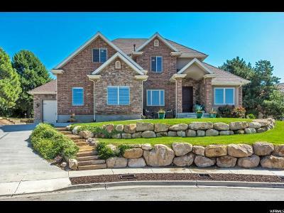 Lehi Single Family Home For Sale: 976 W Wade Cir N