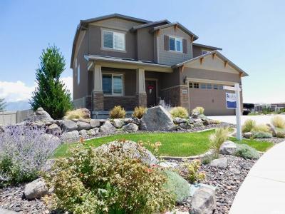 Herriman Single Family Home For Sale: 4591 W Heritagefield Cir S