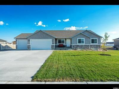 Grantsville Single Family Home For Sale: 789 E Sunset View Rd