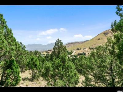 Herriman Residential Lots & Land For Sale: 15148 S Rose Canyon Rd