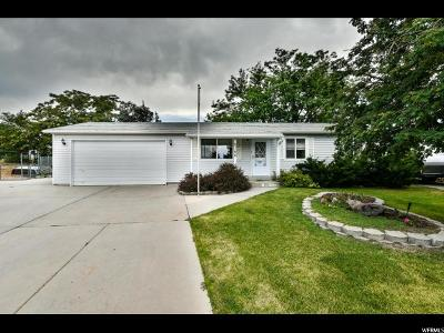 West Valley City Single Family Home For Sale: 5150 W White Flower Cir
