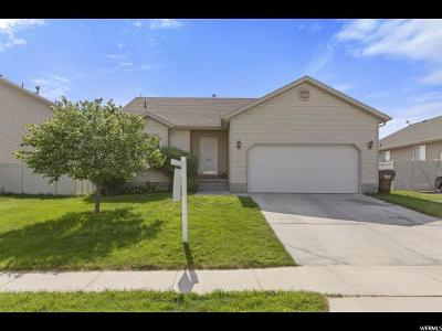 Eagle Mountain Single Family Home For Sale: 4357 N Saddle Horn Dr