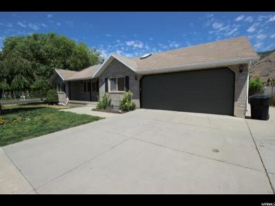 Springville Single Family Home For Sale: 601 S Houtz Ave