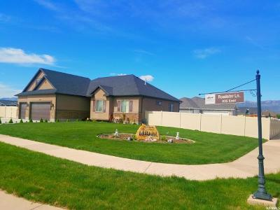 Grantsville Single Family Home For Sale: 382 Roadster Ln