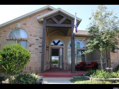 South Jordan Single Family Home For Sale: 3247 W Clarkston Cir