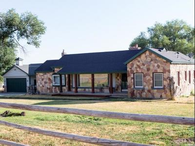 Willard Single Family Home For Sale: 9138 S Hwy 89