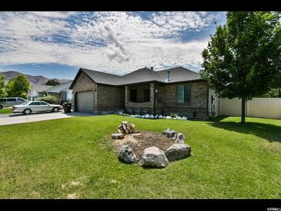Eagle Mountain Single Family Home For Sale: 1992 E Partridge Ln