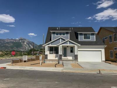 Sandy Single Family Home For Sale: 10667 S Ridge Way Rd