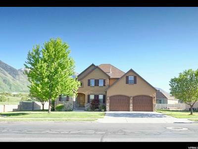 Salem Single Family Home For Sale: 944 E 340 S