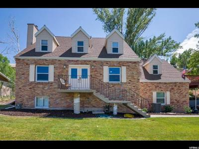 Sandy Single Family Home For Sale: 2460 E Dimple Dell Rd