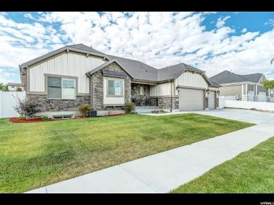 West Valley City Single Family Home For Sale: 6981 W Harding Dr S